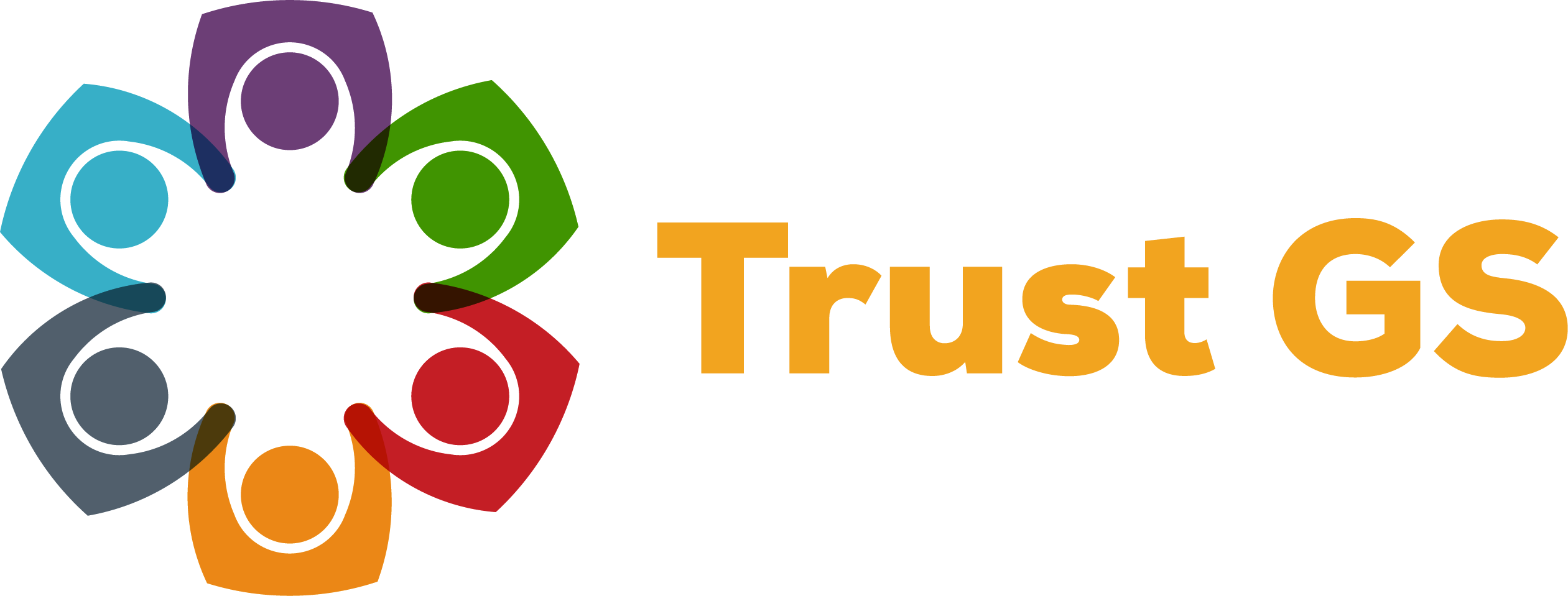Trust Governor Services